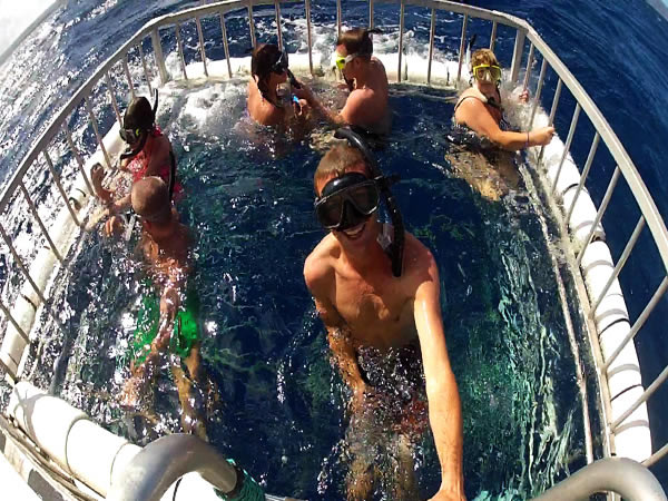 Oahu North Shore Boat Tours